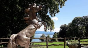 bronze-horse-custom-sculptures-life-size-statuette-for-sale