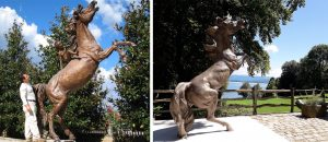 bronze-horse-custom-sculptures-life-size-statuette-for-sale-cover-01
